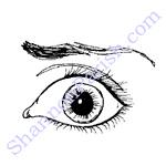 clipart_eye